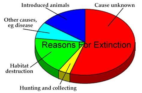Research paper on extinction